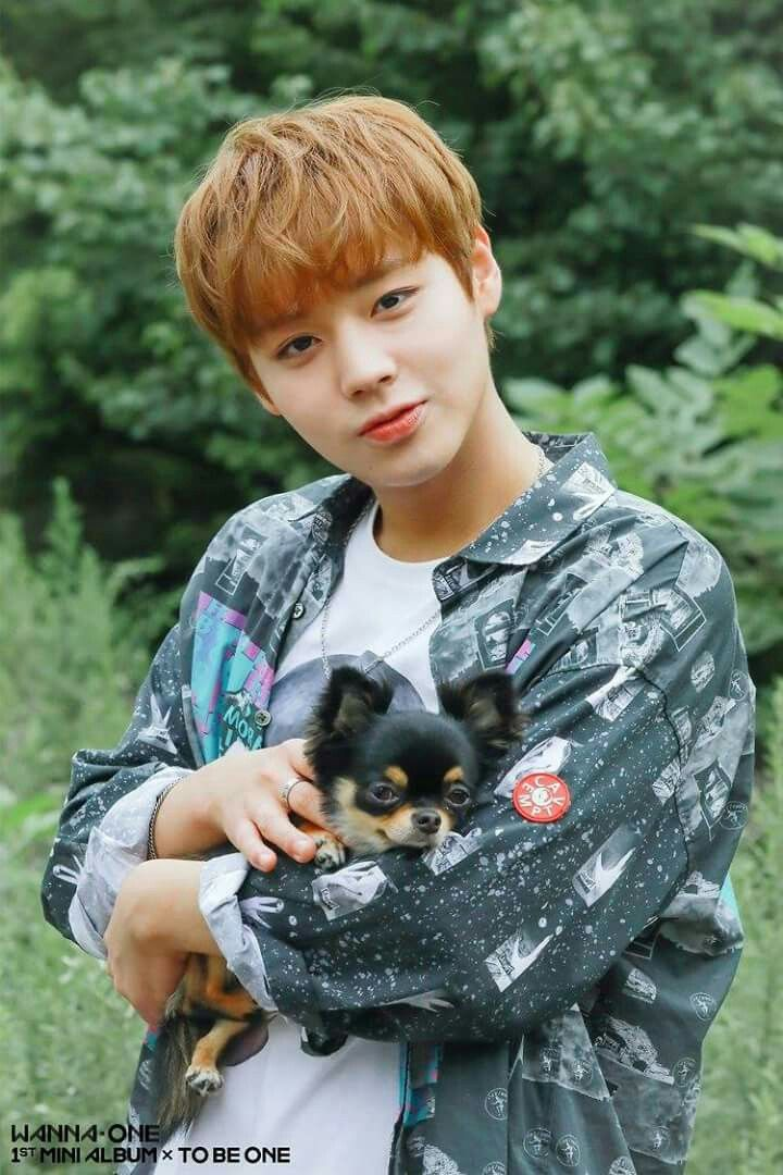 For me Jihoon just like puppy >< cute
