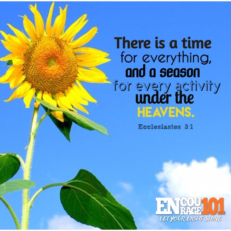 A TIME FOR EVERYTHING!  There is a time for everything,  and a season for every activity under the heavens.  John 16:33
