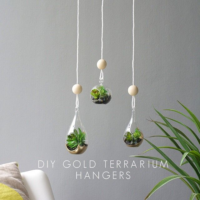 Picked up these glass terrarium hangers from @therejectshop Not bad huh?! Added some gold paint and wood bead details and I'm in love. Such an easy and affordable Mother's Day gift idea! Check it out on crafthunter.com.au today