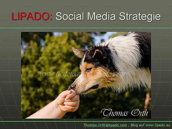 """Grundlagen: Gefühle und Emotionen; der Kern einer """"Sympathieführerschaft"""" als strategisches Unternehmensziel innerhalb der """"LIPADO-Social-Media Strategie"""""""