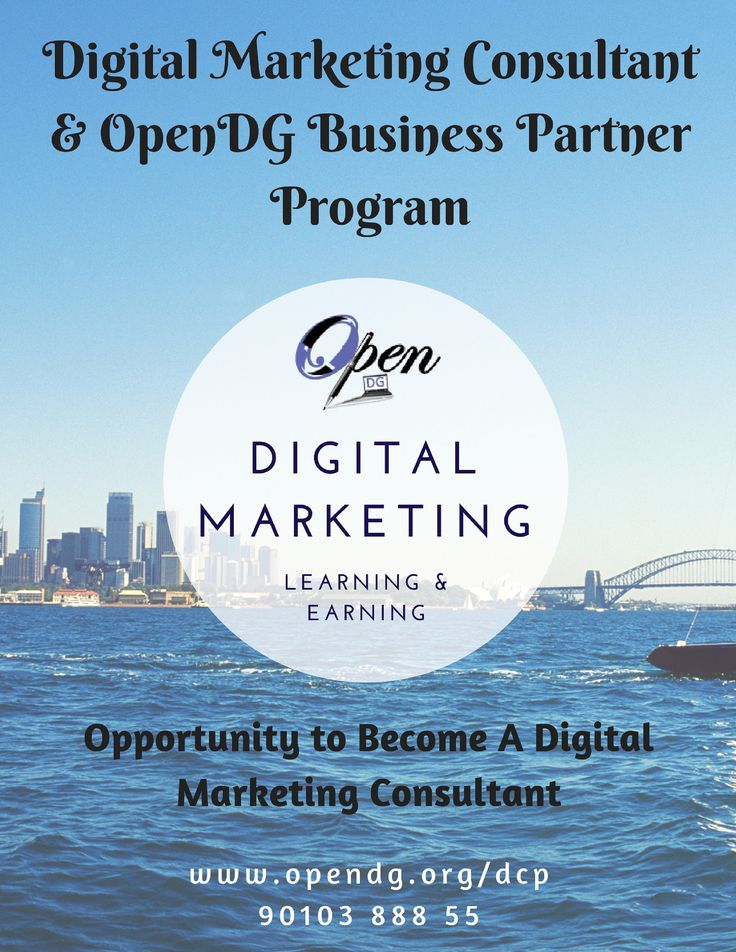 40 best Digital Marketing Consultant \ OpenDG Business Partner - marketing consultant resume