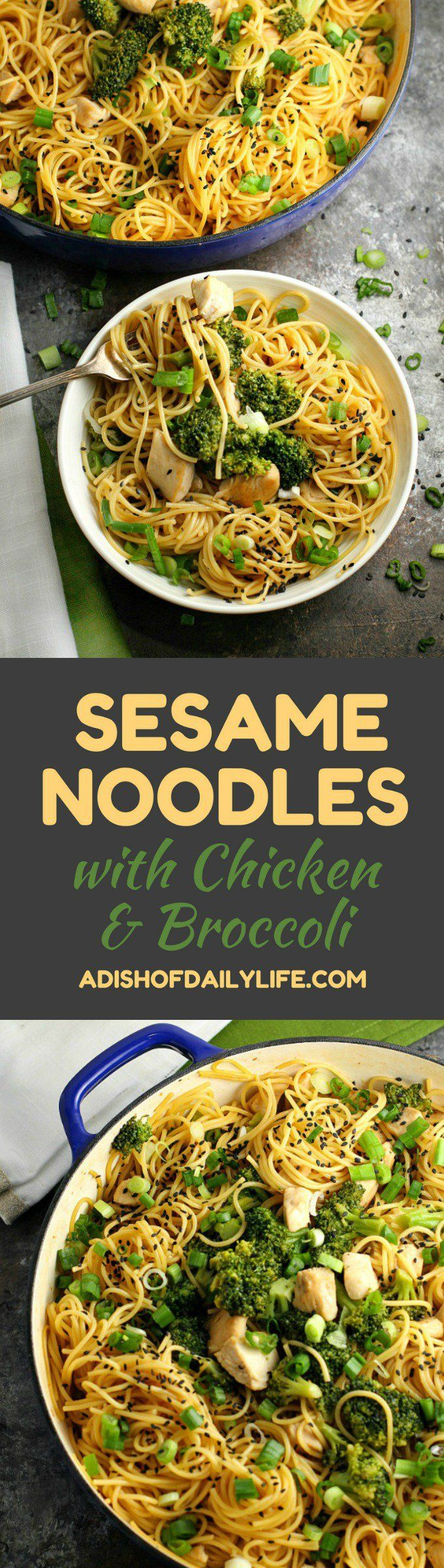 Sesame Noodles with Chicken and Broccoli...an easy and delicious one pot meal that is perfect for a dinner or potlucks!