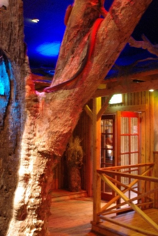 Old tree stump in the foyer of the Narabri club by Graham Lees