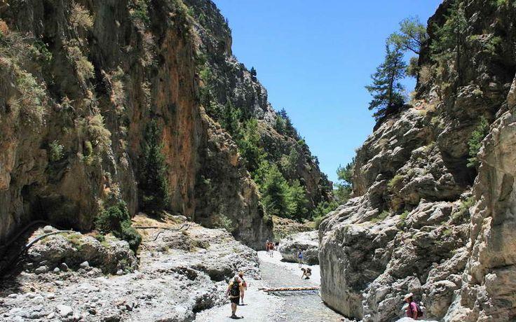 Charter Creta 2015 - photo 23  http://www.meridian-travel.ro/oferte/creta-timisoara/