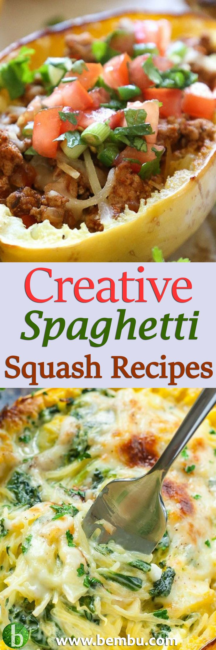 Looking for a healthier pasta alternative? Try spaghetti squash! Find out the benefits of eating this humble veggie. Plus, 20 creative spaghetti squash recipes! Health Tips │ Health Ideas │Healthy Food │Health │Food │Desserts │Low Carb │Favourite Recipes │Gluten Free │Breakfast #Health #Ideas #Tips #Vitamin #Healthyfood #Food #Desserts #Lowcarb #Recipes #Glutenfree #Breakfast