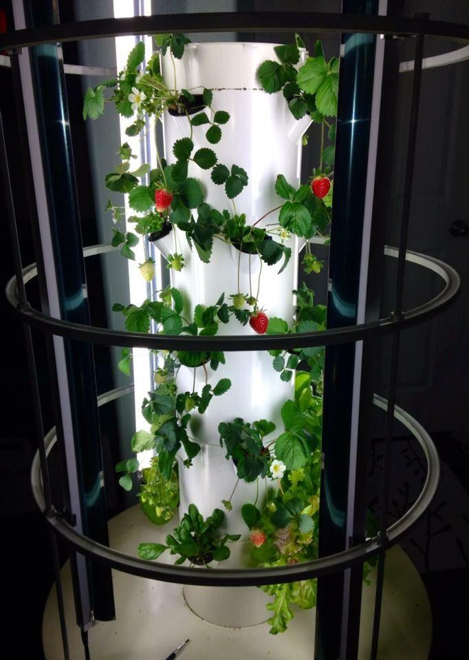 61 Best Tower Garden Vertical Aeroponic Growing System 400 x 300