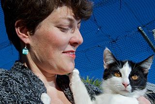 Claws out on no-kill scheme