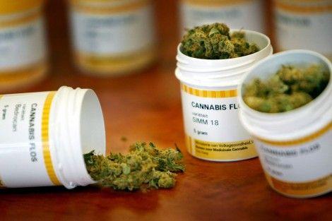 7 de cada 10 médicos en Estados Unidos recetarían marihuana con fines terapeúticos