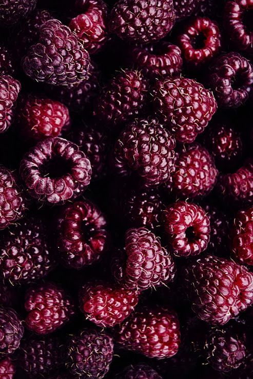 raspberries x blackberries = bloodberries