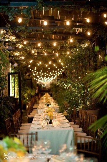 Outdoor dinner. Love the lights and trees for outside decor.
