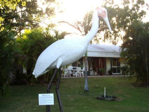 The Big Brolga, Townsville