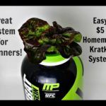 <p>Hydroponics system for beginners! This video shows you how to build an easy Hydroponics System at home in under 5 minutes for $5!! You can use this homemade hydroponic system to grow almost anything you want indoors. We are going to use this hydroponics system to grow lettuce.  Check back weekly for grow updates!!</p> <p>Light Used: http://amzn.to/1XB8RmM</p> <p>NewEarthHydroponics</p>
