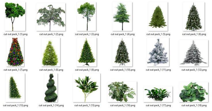 Free Download Vegetation Cutout