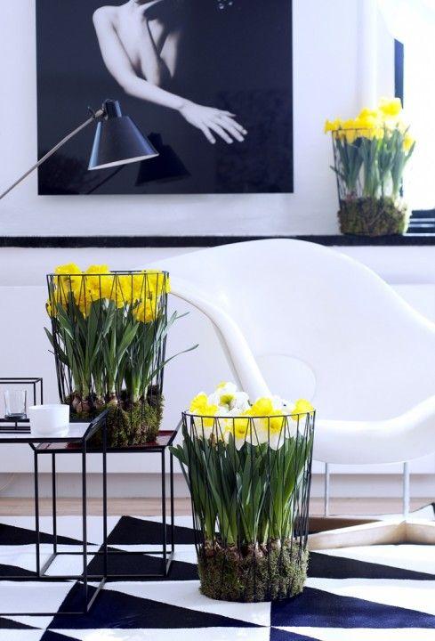 Groen wonen | De Narcis brengt het voorjaar in huis + DIY tip! • Stijlvol Styling - WoonblogStijlvol Styling – Woonblog