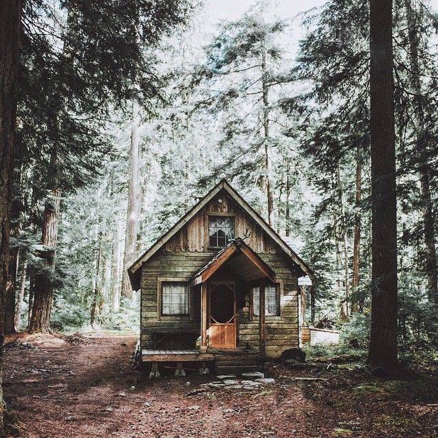 """""""On the search for the perfect cabin in the woods."""""""