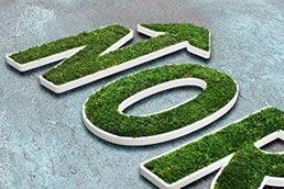 Logo z mchu MOSS TREND. Naturalna identyfikacja o wyjątkowym charakterze.  Dostępne w BandIt Design: www.banditdesign.pl  #logo #eco #design