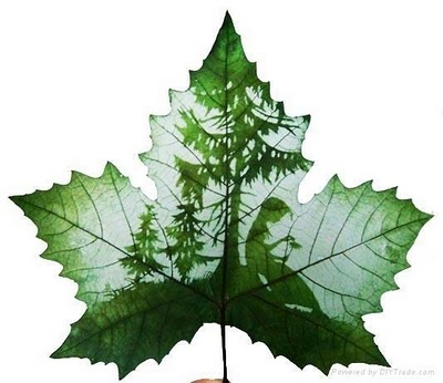 leaf carving - amazing
