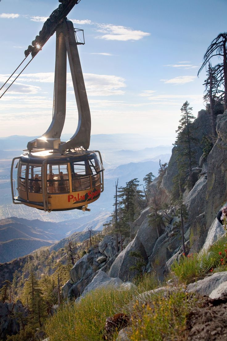 ... on the tram from Palm Springs to the top of Mt. San Jacinto.