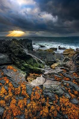 The Isle of Skye on the west coast of Scotland.