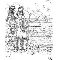 24 best Missouri History for the 3rd grade images on