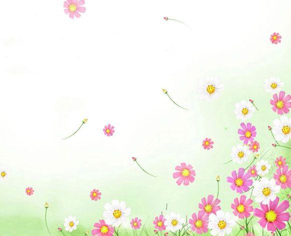 خلفيات بوربوينت 2020 Hd ناعمة وهادئة بدون حقوق Flower Backgrounds Flower Background Wallpaper Pink Flowers Background