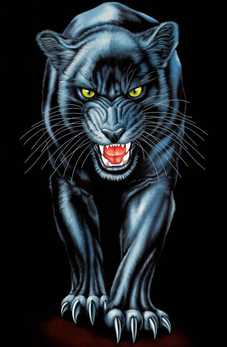 Black Panther By Real Warner Panther Art Tiger Artwork Black Panther Art