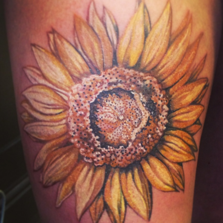 My first tattoo a big sunflower head on my thigh i love for Sunflower temporary tattoo