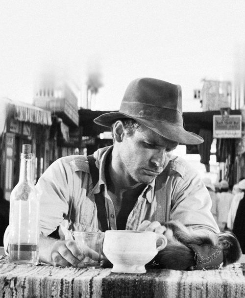 Raiders of the Lost Ark : Indy and the monkey share a quiet moment.