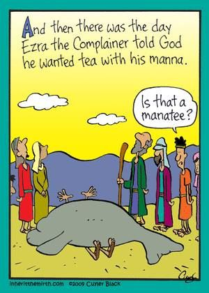 Manatee | Laughing in Church | Bible humor, Bible jokes ...