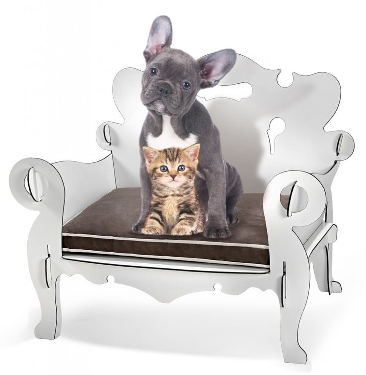http://regalidacani.it/prodotto/cucciolotta-royal-small/ #cuccia #cani #Regalidacani #dog #glamour #dogdesign #Cucciolotta