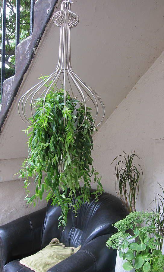 48 best Basket Planters images on Pinterest | Flowers ... on Hanging Plant Pots Indoor  id=41822