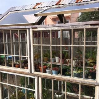 reclaimed window green house