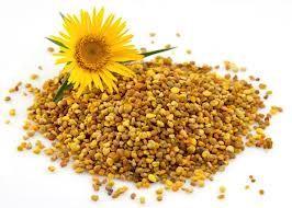 Een tijdje terug had ik al gelezen over de goede eigenschappen van bijenpollen. Geschrokken van de prijs van een potje gele bolletjes heb ik het toen laten