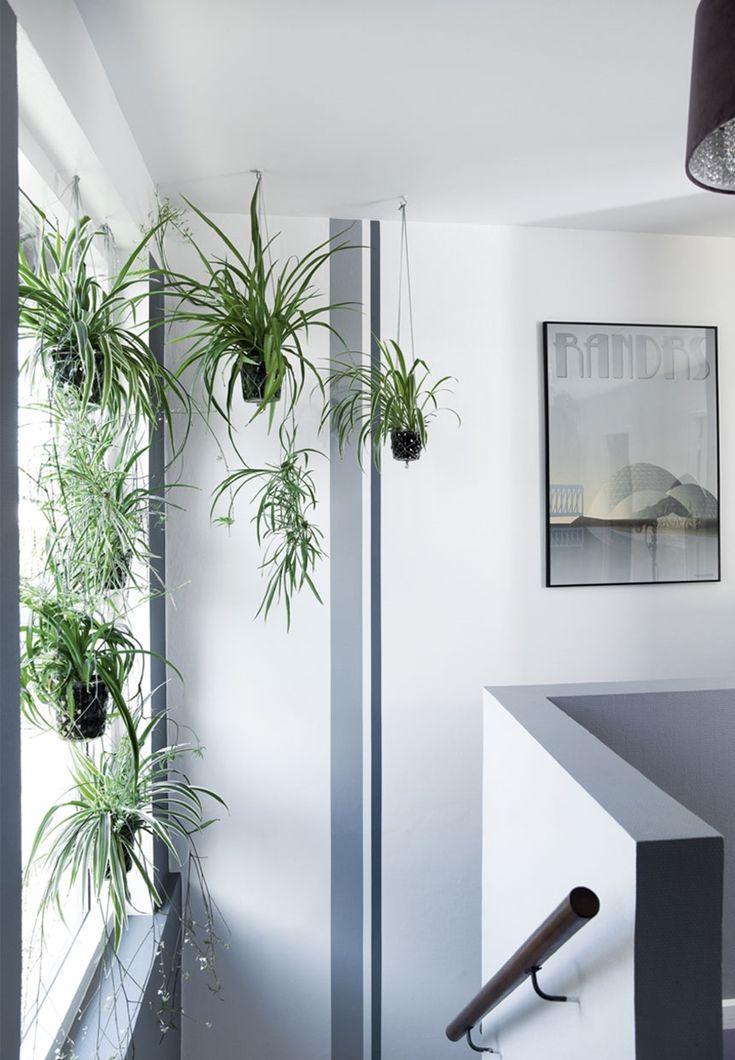 280 best B O T A N I C A L images on Pinterest Indoor house - dekoration für küche