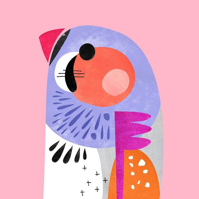 ✨Zebra Finch✨ New Australian bird prints available online today.  I love zebra finches www.petecromer.com    Instagram