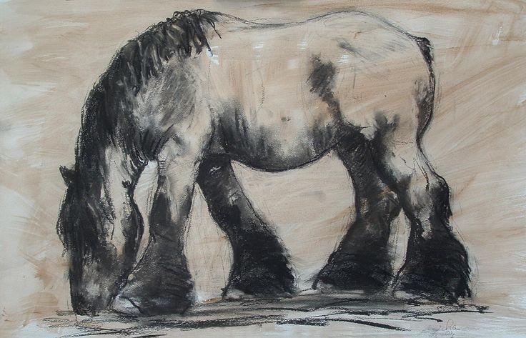 belgisch trekpaard tekening - Buscar con Google ...