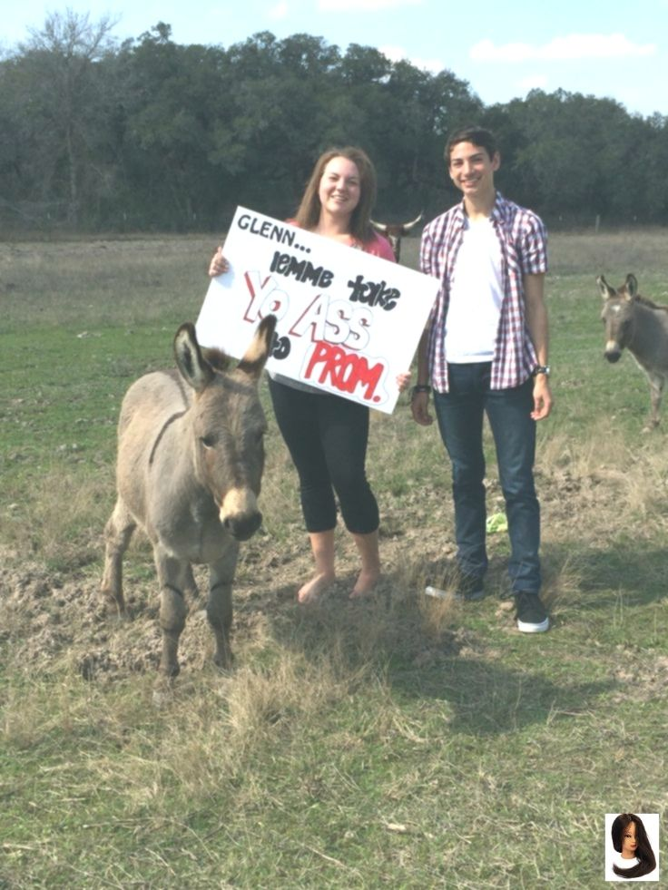 Funny donkey proposal for friends