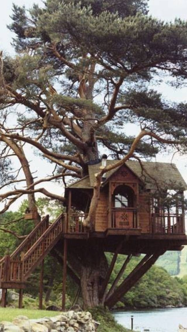 17 best images about cool tree houses on pinterest for Cool backyard tree houses