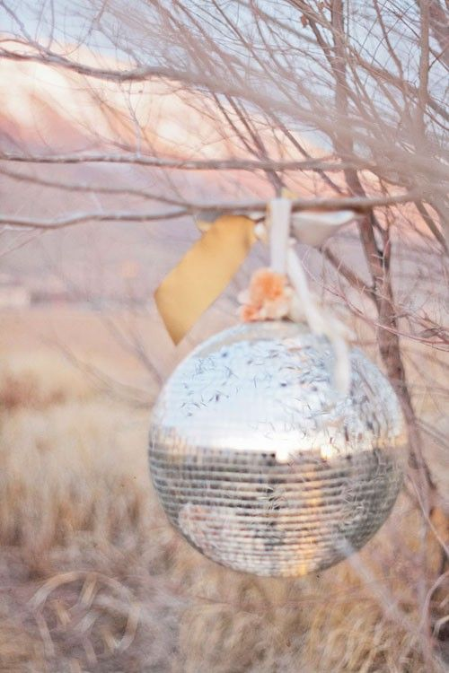 outdoors: Discos Ball, Ideas, Disco Ball, Seasons, Parties, Outdoor, Colors Palettes, Trees, Mirror Ball