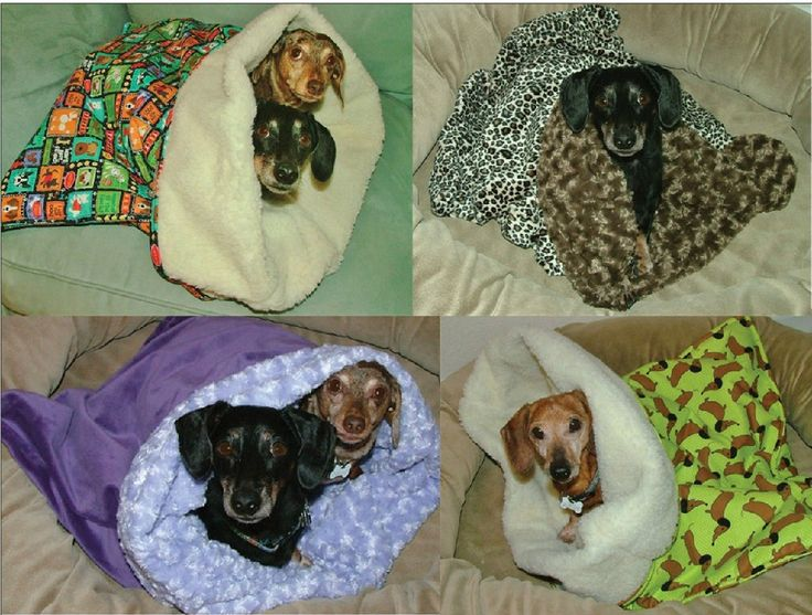 Dachshund Snuggle Bags -- I think all little dogs and all cats should have one! :-)