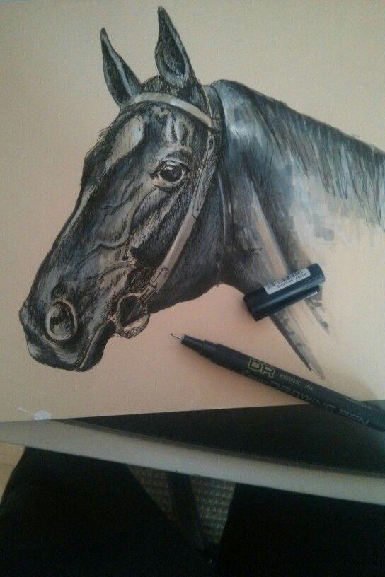 Enrique Parra  Head of horse