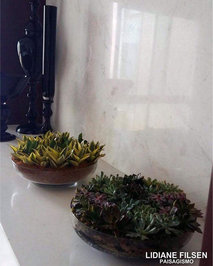Vasos de vidro com mini-espadinhas e suculentas variadas - bairro Belvedere (BH). Lidiane Filsen Paisagismo.  #paisagismo #bh #mg #miniespadinhas #suculentas #vasosdevidro #decor #arquitetura #architecture #archdecor #decorating #decorazione #homedesign #homedecor #instadecor #interiordesign #garden #areaexterna #greenwall #jardim #verde #natureza #nature #details #project #revistavivercasa #ceramica #cachepot #minijardim by lidianefilsen http://discoverdmci.com