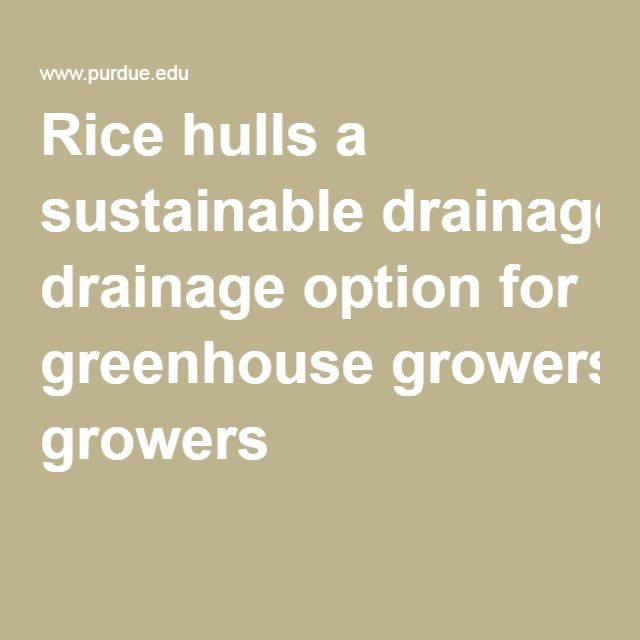 Rice hulls a sustainable drainage option for greenhouse growers