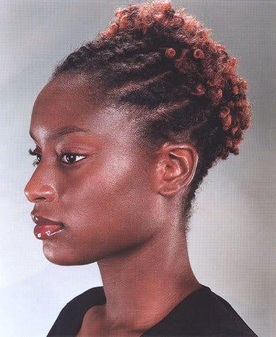 TWA Hairstyles Twist Natural Hair