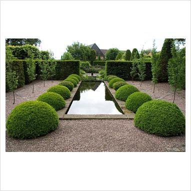 Topiary in the Rill Garden at Wollerton Old Hall, Shropshire.