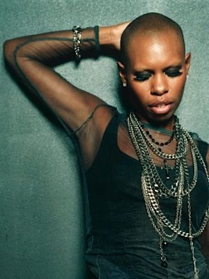 Skin~You may not recognize the name Deborah Anne Dyer, but you may know her as Skin. The singer has fronted British band Skunk Anansie since 1994, lending her soulful yet somewhat aggressive vocal style for five studio albums.  Although active with Skunk Anansie heavily during the mid-to-late 90s, the band split in 2001, only to reform once again in 2009 to create the albums 'Wonderlustre' and 'Black Traffic.' Skin has also embarked on a successful solo career, garnering positive reviews for…