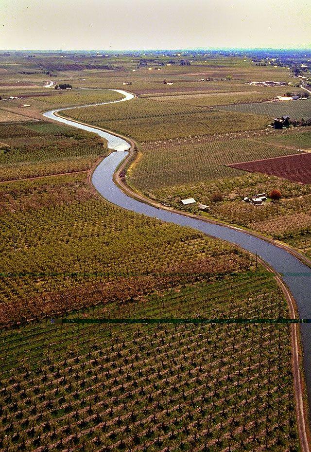 Aerial view of apple and pear orchards near Yakima, Washington. Photo: Brian Prechtel