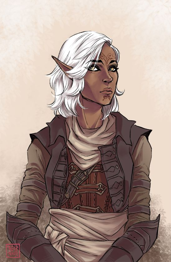 inquisitor from Dragon Age : Inquisition