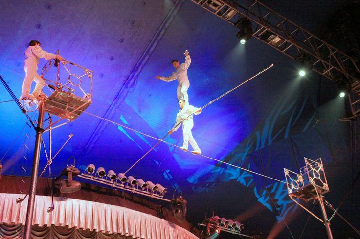 circo tihany - Pesquisa Google