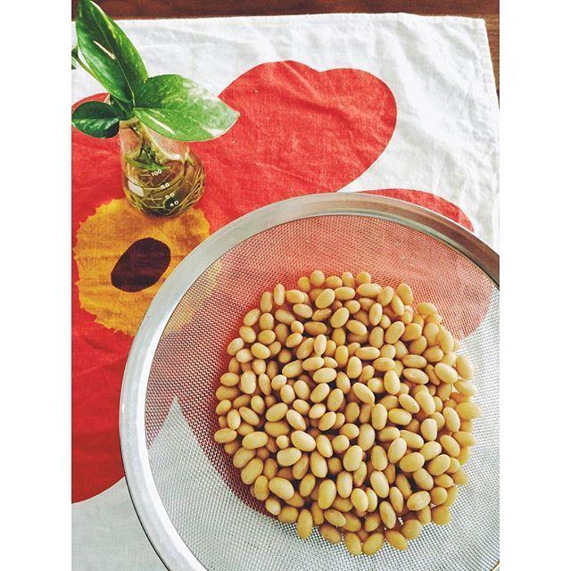 実は簡単大豆料理!上手に戻して毎日食べたい栄養おかずの作り方